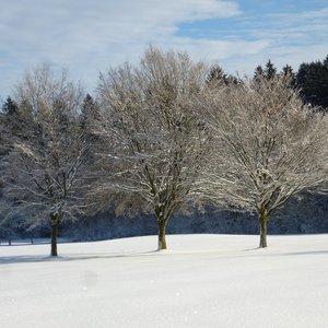 7_Winter_GCSO2016_17__10_.JPG