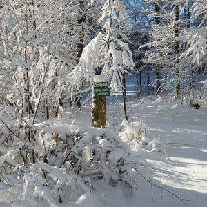 7_Winter_GCSO2016_17__12_.JPG