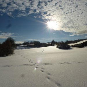 7_Winter_GCSO2016_17__21_.JPG