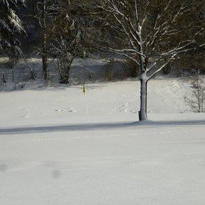 7_Winter_GCSO2016_17__23_.JPG