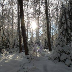 7_Winter_GCSO2016_17__24_.JPG