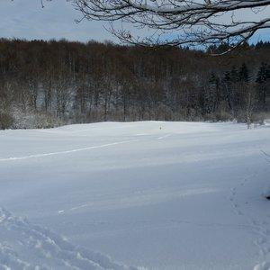 7_Winter_GCSO2016_17__2_.jpg