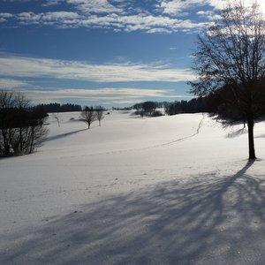 7_Winter_GCSO2016_17__4_.jpg