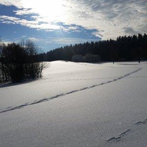 7_Winter_GCSO2016_17__5_.jpg