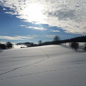 7_Winter_GCSO2016_17__7_.jpg