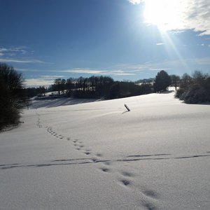 7_Winter_GCSO2016_17__8_.jpg